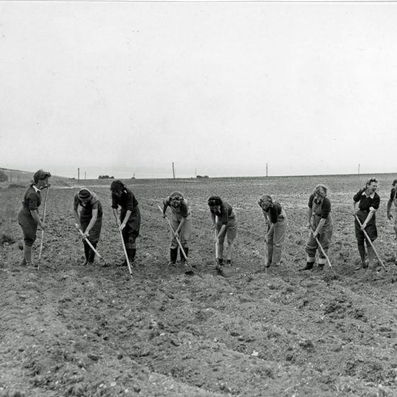 Land Army Girls working on local farms (2)