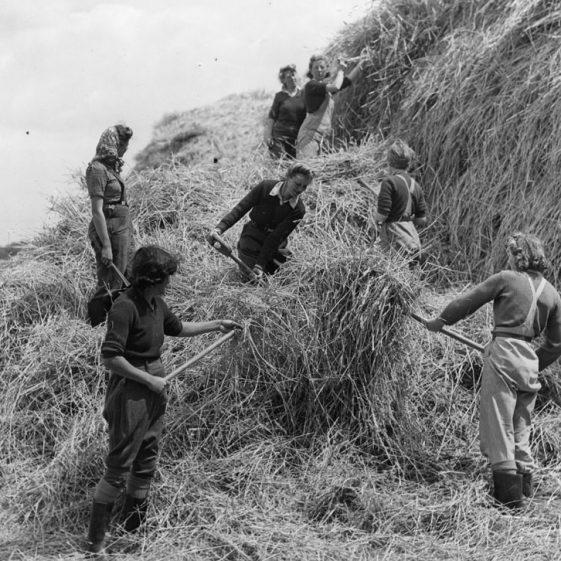Land Army Girls (4)
