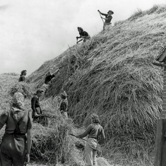 Land Army Girls working on local farms. (4)