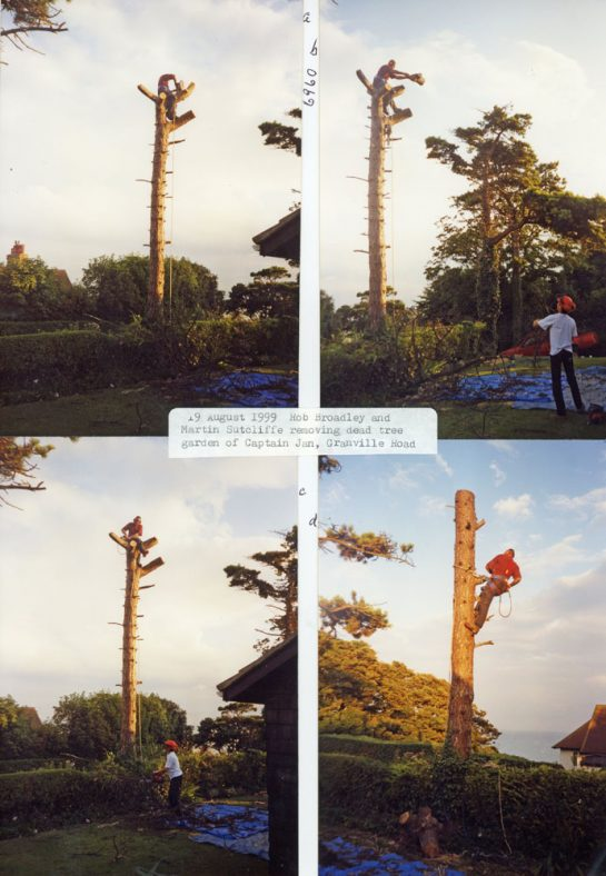 Cutting down a dead tree at the house Named Captain Jan 19/08/1999