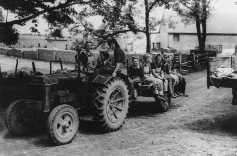 Land Army girls on a tractor at Reach Court Farm. c1942