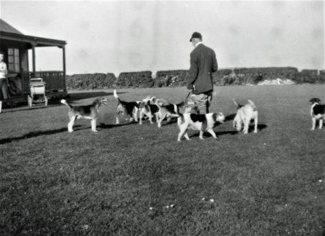 Ringwould beagles meet at Ridgeview, Kingsdown Road