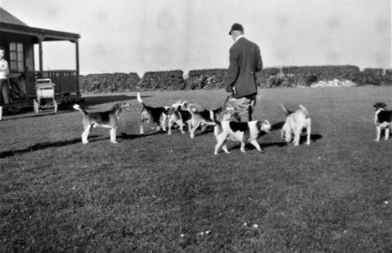 Beagle Meet at Ridge View