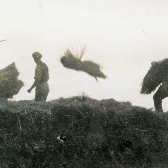 Bockhill Farm: Manual labouring