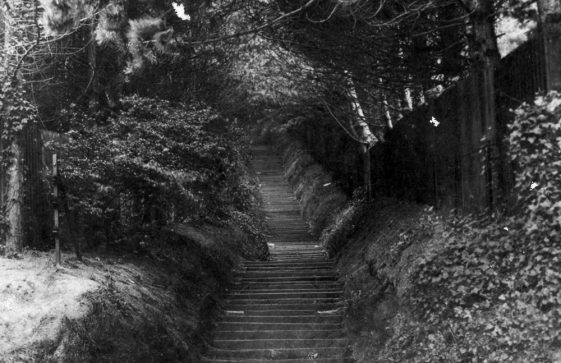Long Steps up from The Bay. 20th Century