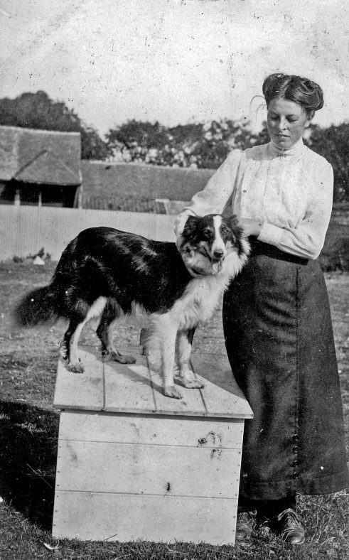 Annie Sharpe with her dog at Bockhill Farm