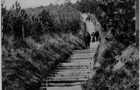 Long Steps up from the Bay. postcard sent to 53 Kingsdown Road. c1900