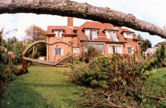 Salterns, Salisbury Road after the Great Storm of 1987