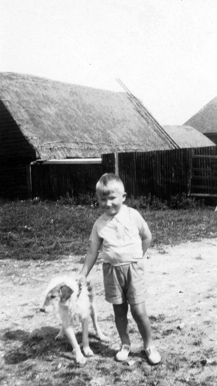 Bockhill Farm: Young boy with Pip the farm dog.