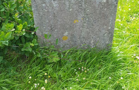 Gravestone of GOLDER Louisa Charlotte Elizabeth 1890; GOLDER Sarah Ann 1915