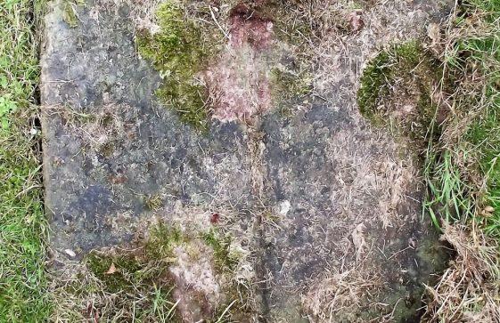 Gravestone of MARSH William Charles 1951