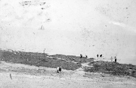 St Margaret's Bay at low tide