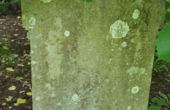 Gravestone of BRAY Charles 1900; BRAY Lucy 1915