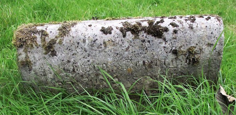 Gravestone of SINDEN Edmund 1922; SINDEN Mary 1925 | Dawn Sedgwick