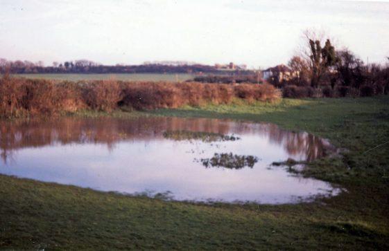 The pond in Pond Lane, Westcliffe. December 1984