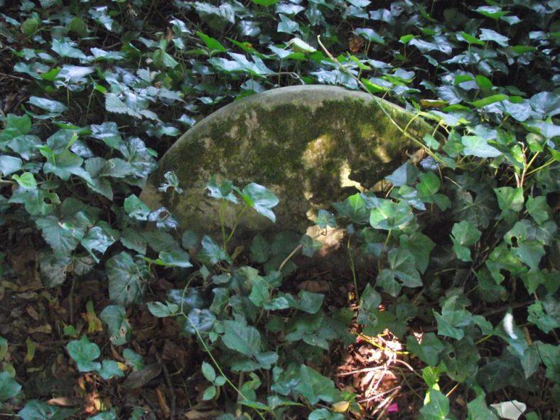 Gravestone of CURLING Selina 1881 | Dawn Sedgwick