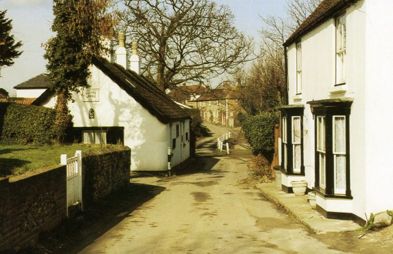 A view along Chapel Lane with Cliffe Lodge and The Cottage. 20th century