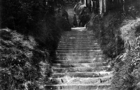 '216 Steps, St Margaret's Bay'.  20th Century