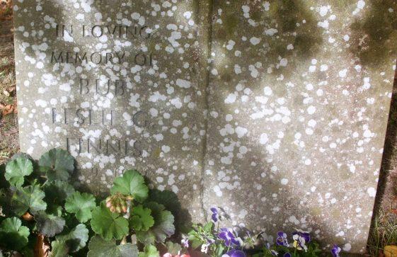 Gravestone of FINNIS Leslie G 1984