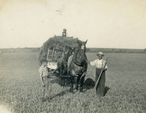 A full load of clover at Bockhill Farm. c1928