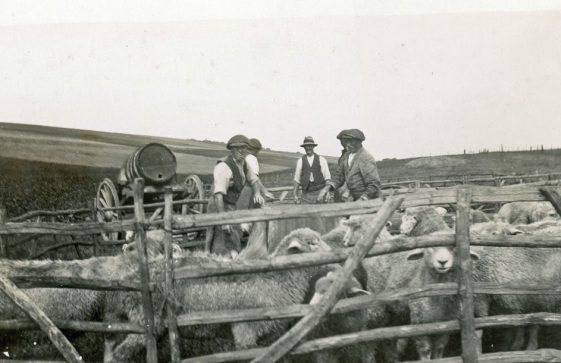 Bockhill Farm