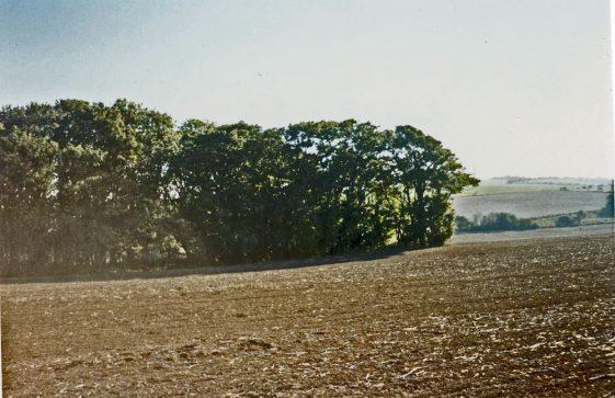 Hope Farm site, 15 October 2003