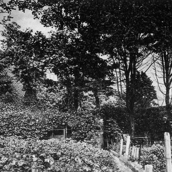 Souvenier postcards of The Green Man in the Bay and its gardens