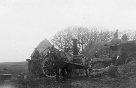 Threshing powered by a steam driven traction engine at Bockhill Farm. Undated