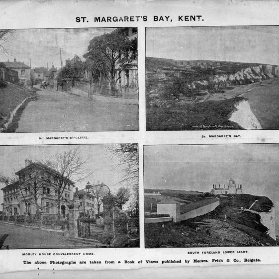 A brochure by auctioneers Protheroe & Morris detailing remaining plots for sale at Nelson Park as at 1 September 1902