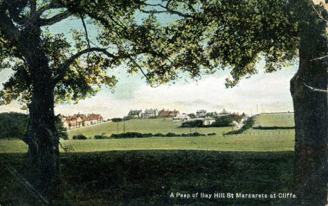 Houses along Droveway Gardens and The Droveway taken from Reach Road. 1906