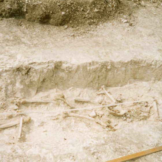 Archaeological investigation of the site at Eden Roc, Bay Hill. April-June 2004