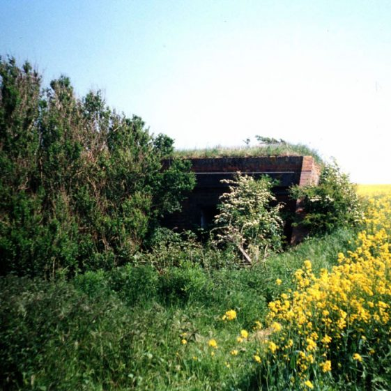 Sites of the WW2 guns Clem and Jane at Wanstone Farm. 20 May 1990