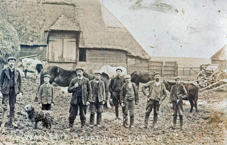 Farm workers at Wallett's Court in 1908