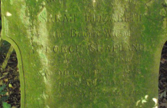 Gravestone of SHAPLAND Sarah Elizabeth 1868