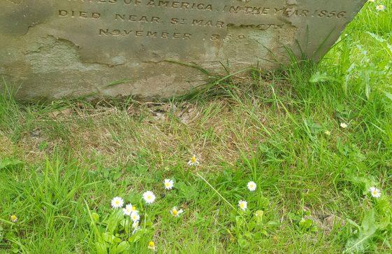 Gravestone of HARRISON Apollos Butler 1889