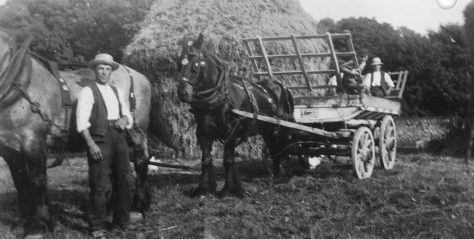 Haycart with workers on Bockhill Farm. c1928