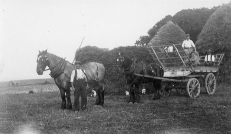 Stacks at Bockhill Farm. c1928