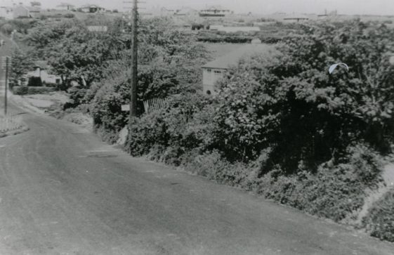 'Looking towards Nelson Park'. Showing 'Cliffe Place' in the dip in Station Road