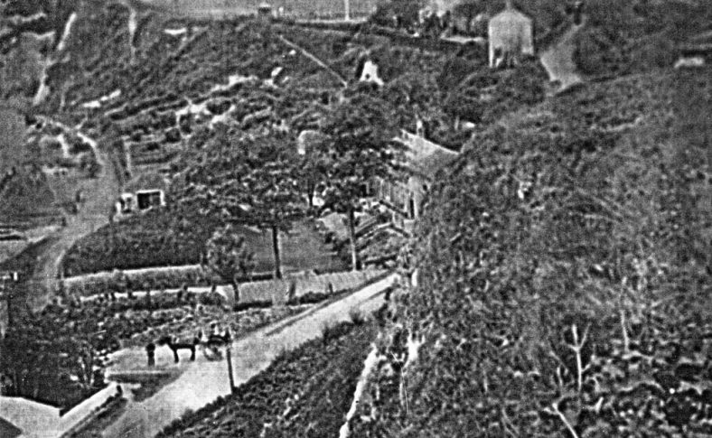 The Green Man at the bottom of Bay Hill with horse and cart. c1900
