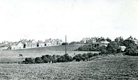 Looking across the fields towards 'The Flats' in Droveway Gardens. Early 20th century