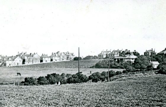 The Flats, Droveway Gardens from Sea Street. Early 20th century