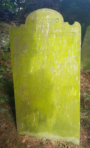 Gravestone of FARRIER Samuel Collett 1864; FARRIER Frances 1864; ELENDEN Emma Frances 1864