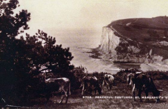 'Peaceful Pastures'  St Margaret's Bay pictured from the Leas