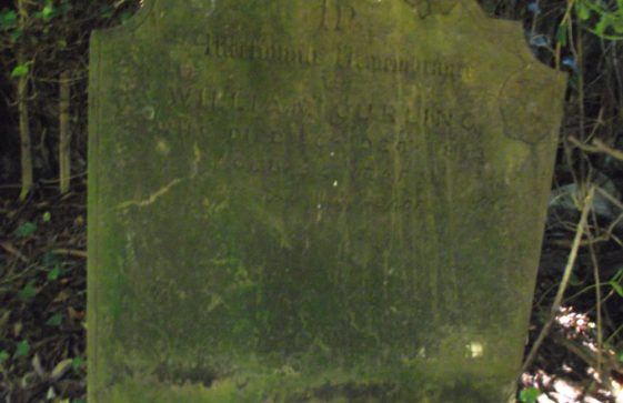 Gravestone of CURLING William 1893