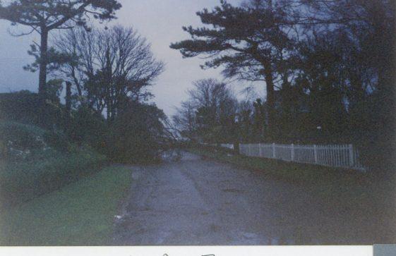 Storm Damage in Granville Road. October 1994
