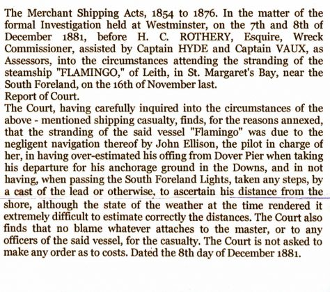 Court findings into the loss of the Flamingo. 1881