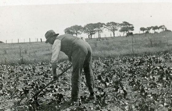 Bockhill Farm: Manual labouring