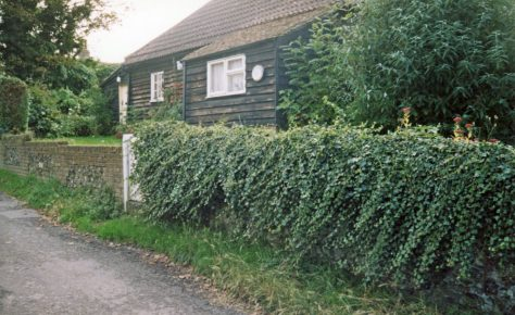 Groves Cottage, Chapel Lane. 2007