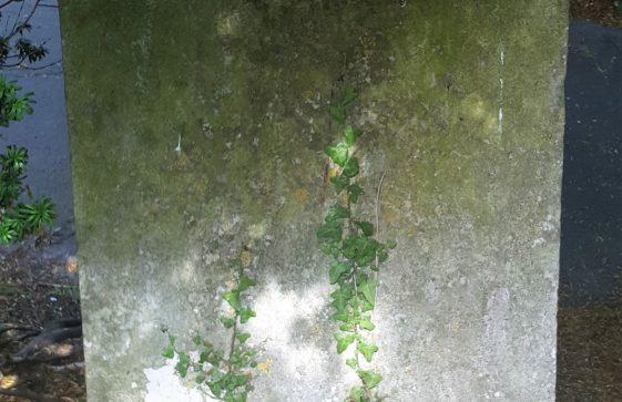 Gravestone of WELLARD Sarah 1755; WELLARD John 1774