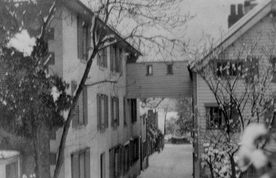 Cripps Lane: Summer and Winter